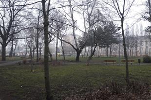 Indul a Malom-liget átépítése Győrben. Vajon melyik cég nyeri el a beruházást?