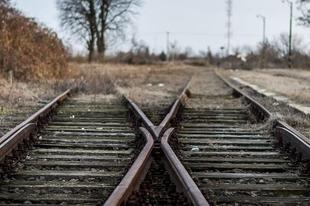 A Győr-Veszprém vonalon kidőlt fa akadályozza a vonatközlekedést