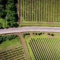 MOSONMAGYARÓVÁRNAK IS JÓ LESZ: Indulhat az új magyar-osztrák közúti kapcsolat kiépítése