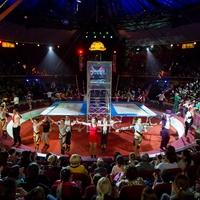 Ilyet még sohasem látott, Magyarországon ünneplik először az újkori cirkusz 250 ÉVES évfordulóját! Jöjjenek el Önök is!