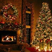 Mit csináljanak a karácsonyfájukkal az óváriak?