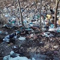 TUDTA?! Tatabányán megszűnt a közületi szelektív hulladékgyűjtés egy ideje? Az agyatlanság netovábbja!