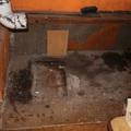 ROSSZ FEJ LÁTOGATÓ: Berúgta a tatabányai hétvégi ház ajtaját és elvitte a kályhát