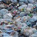 MOST MÁR A SZOMSZÉDUNKBAN IS BETILTOTTÁK AZ ÖSSZES MŰANYAGZACSKÓT! Itthon meddig szennyezünk még?