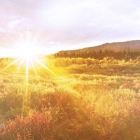 Aki Tatabányán szeretett volna kisméretű napenergia-erőművet, hiába: most a kormány kicsinálta, minden előzmény nélkül