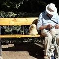 Tatabányán hány nyomorgó nyugdíjas van? Országos csúcsot döntünk