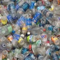 Megvan a megoldás, ami megeszi és hasznosítja a Tatabányán kidobott PET palackokat is?!
