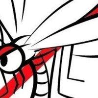HOLNAPTÓL a szúnyogoknak annyi! Kezdődik a központi szúnyogirtás, vajon Tatabányán mikor kezdik a helyi szúnyogirtást?