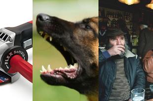 Tatabányai anzix avagy flex, kutya, kocsma, hogy mindenki élvezze!