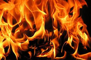 Sok hektáron égett a nádas Tatabányán