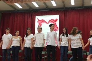 TATABÁNYÁN ÍGY SZERETNEK! Fantasztikus művészeti fesztivált tartottak Felsőgallán