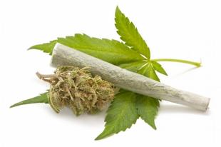 KÉT TATABÁNYAI DÍLERT SITTELHETNEK HOSSZÚ IDŐRE! Kiló számra adták-vették a marihuánát