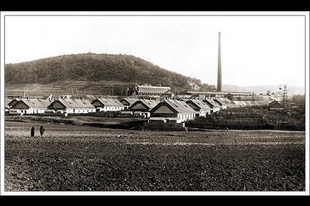 Mésztelep: a megrendítő hely, ami évtizedek óta Tatabánya adóssága