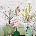 ĺgy dekoráld az üzleted tavaszváró virágokkal