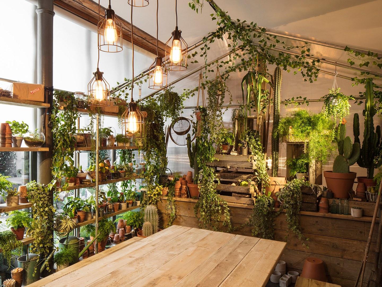 airbnb_greenery-112.jpg