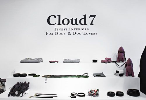 cloud7-kutya-pop-up-bolt4.jpg
