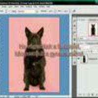 Gyorsmaszk készítése - Photoshop videó