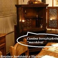 KultúraLaBor a Fekete Borpince borkóstolóján a Sigi Gallery-ban
