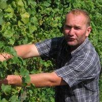 Légli Géza legjobb bora