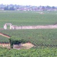 Burgundia Egerben