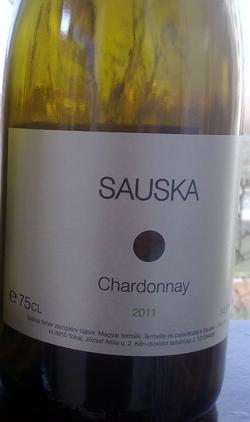 sauska_ch_2011.jpg