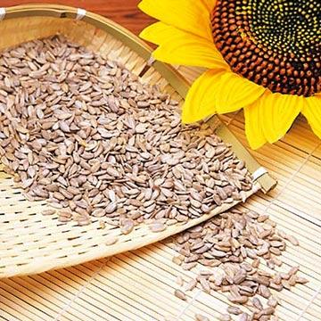 sunflowerseeds.jpg