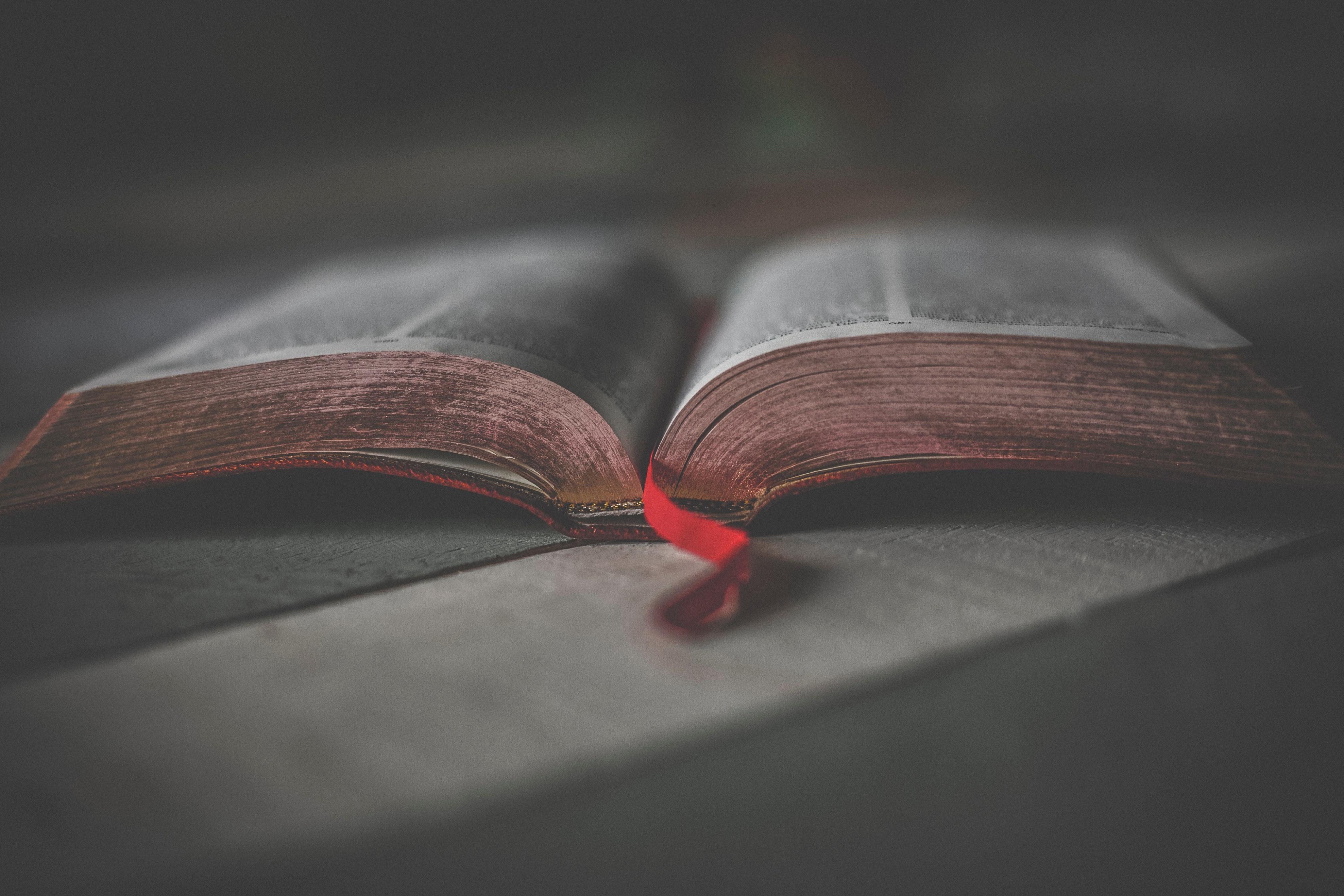 bible-biblia-book-1112048_1.jpg