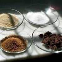 Szőlő, must, mazsola a tányéron