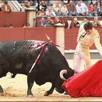 Emelkedő spanyol borexport