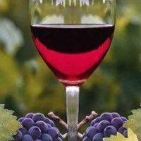 VINCE 2012 - magyar érdekeltség borfronton