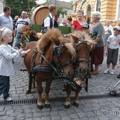 Szeged: Bor tér