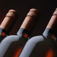 Milyen bort vegyünk karácsonyra?