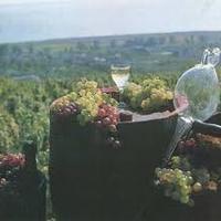 Bormarketing: Kemény támadásban a magyar borok