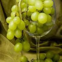 Szőlő, bor, izé...
