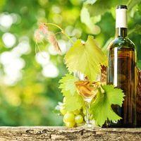 A legszebb szőlőbirtok...