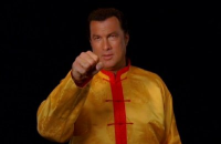 Steven Seagal is CockPuncher