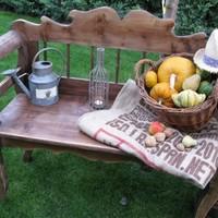 Vendégcikk - Ősz a kertben