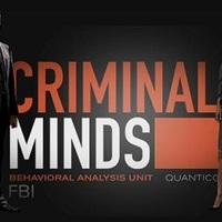 sorozat: gyilkos elmék (S08E01, 2013)