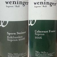 Weninger 2006-osok