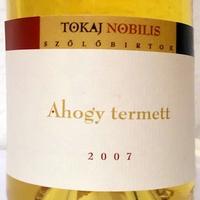 Tegnap ittam - Tokaj Nobilis Ahogy termett 2007
