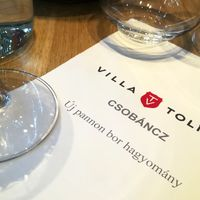 Új időszámítás a Villa Tolnay-nál