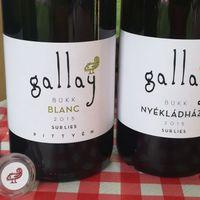 Gallay Pince update