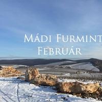 A Furmint Február hazatér - Mádi Furmint Február 2016