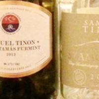Samuel Tinon - portfólió a Klubban