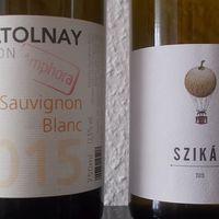 Sauvignon blanc a mátrixon kívül - Villa Tolnay Sauvignon Blanc Amphora 2015 és Somlói Vándor Szikár 2015
