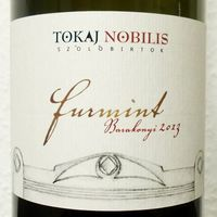Tegnap ittam - Tokaj Nobilis Barakonyi Furmint 2013