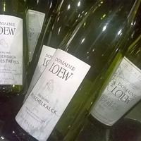 Domaine Loew borok a VinCÉn