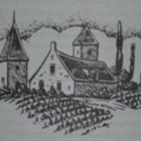 Szentesi Merlot 2009