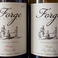 Rejtőzködő borvidékek: Finger Lakes - Forge Cellars