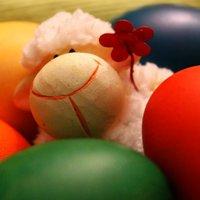 Húsvét a pácban